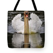 Mute Swan Pictures 141 Tote Bag