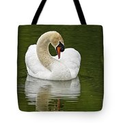 Mute Swan Pictures 191 Tote Bag