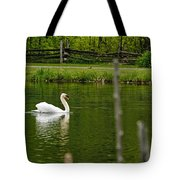 Mute Swan Pictures 195 Tote Bag