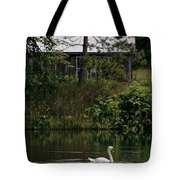 Mute Swan Pictures 199 Tote Bag