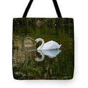 Mute Swan Pictures 85 Tote Bag