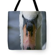 Mute Swan Pictures 88 Tote Bag
