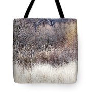 Muted Colors Of Winter Forest Tote Bag