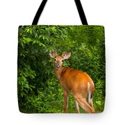 Mutual Respect Tote Bag