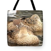 My Beak Is Cold Tote Bag