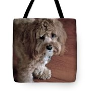 My Boy Charley Tote Bag