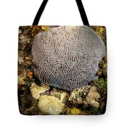 My Brain Underwater Tote Bag
