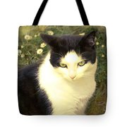 My Days In The Sun ... Tote Bag
