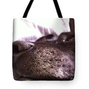 My Dog Bud Tote Bag