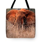 My Elephant In Africa Tote Bag