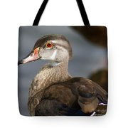 My Feather Friend - Wood Duck Tote Bag