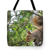 My First American Squirrel Tote Bag