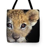 My Grandma What Big Eyes You Have African Lion Cub Wildlife Rescue Tote Bag