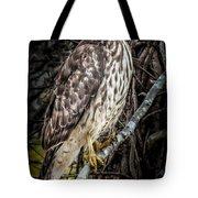 My Hawk Encounter Tote Bag