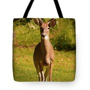 My Little Buddy Tote Bag