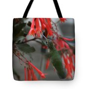 My Little Hummer Tote Bag