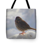 My Little Sparrow Tote Bag