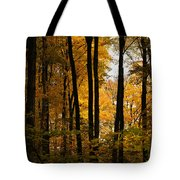 My Love For October Tote Bag