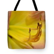 My Name Is Lily Tote Bag