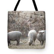 My Next Afghan Tote Bag