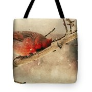 My Nose Is Cold Tote Bag