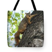 My Peanut Tote Bag by Robert Bales