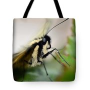 My Pet Butterlfy Tote Bag