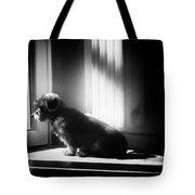 My Thoughtfull Dog Tote Bag