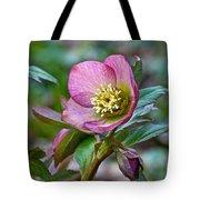 My Wild Xmas Rose Tote Bag