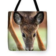 My Winter Lawnmower Tote Bag