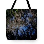 Myakka River State Park Reflections Sarasota Florida Usa Tote Bag