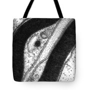 Myelin Sheath Tote Bag