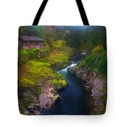 Mysteries Of The Lewis House Tote Bag by Darren  White