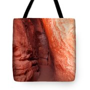 Mysterious Entrance Tote Bag
