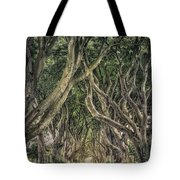Mysterious Ways Tote Bag
