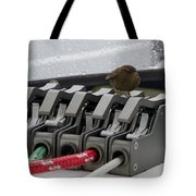 Mystery Bird Tote Bag