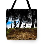 Mystery Of The Forest Tote Bag