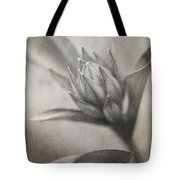 Mystic Anticipation Tote Bag