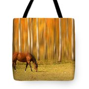 Mystic Autumn Grazing Horse Tote Bag