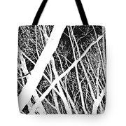 Mystic Forest Tote Bag by Steven Milner