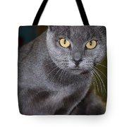 Mystic Tote Bag