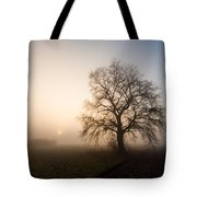 Mystic Morning Tote Bag by Davorin Mance