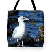 Mystic Seagull Tote Bag