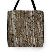 Naked Trees Tote Bag