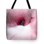 Nap Time Tote Bag