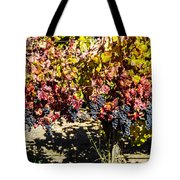 Napa Fall Grapes Tote Bag