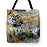 Naptime For A Bengal Tiger Tote Bag