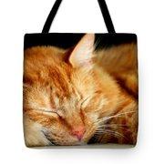 Naptime Tote Bag