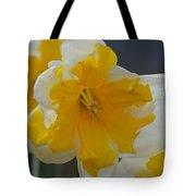 Narcissus 014-1 Tote Bag