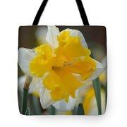 Narcissus 014-2 Tote Bag